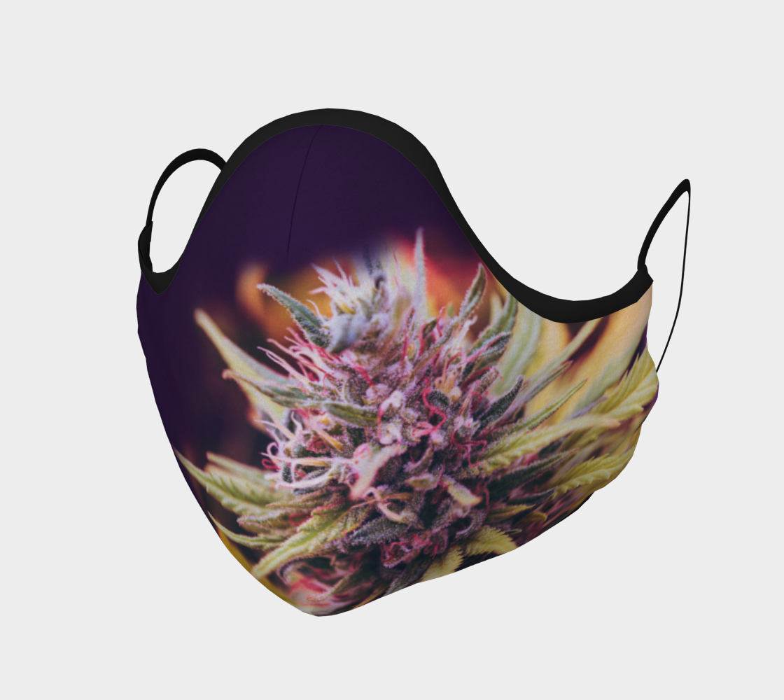 Face Mask - Cannabis Flower on Purple preview