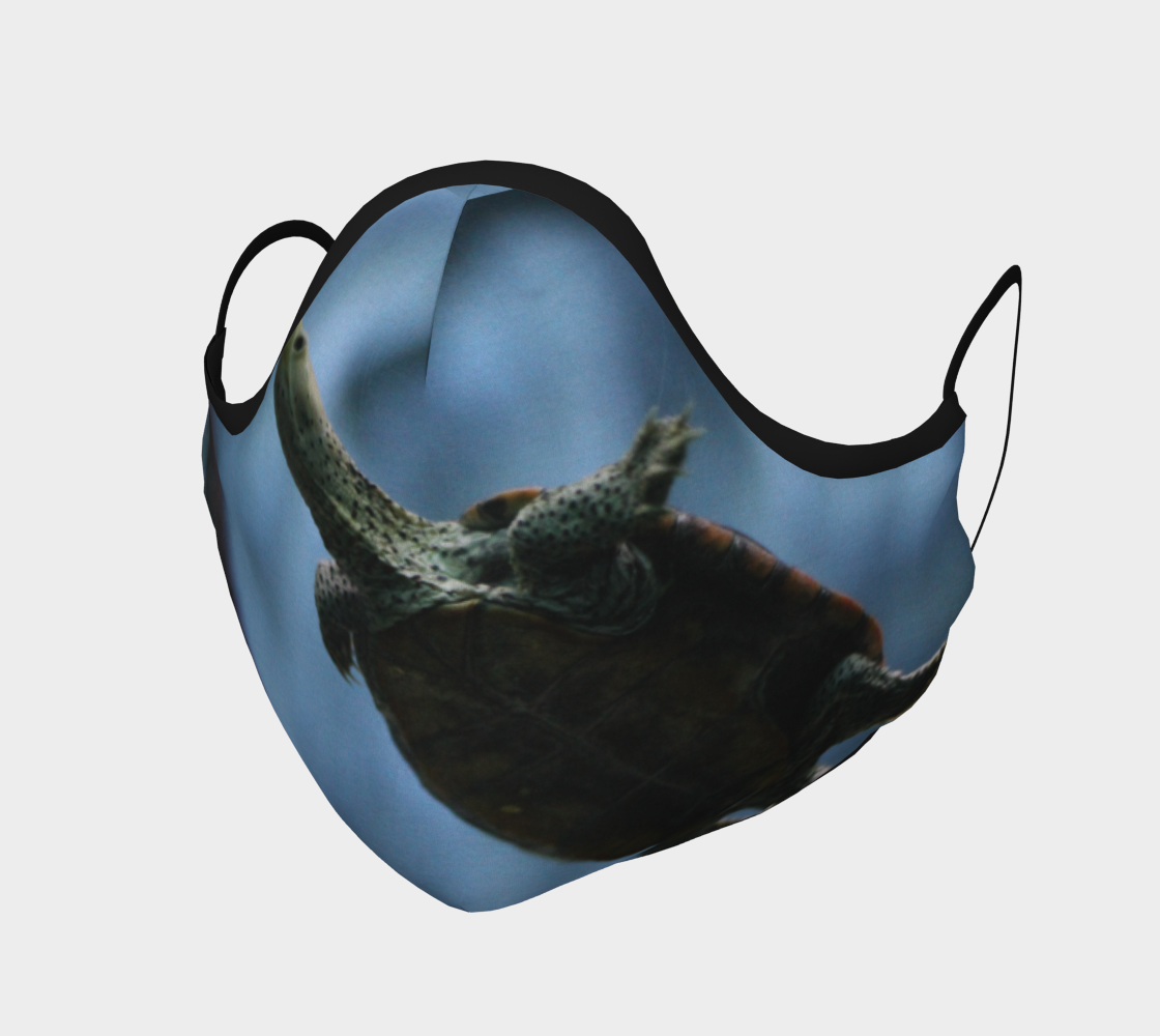 Turtle Face Mask preview