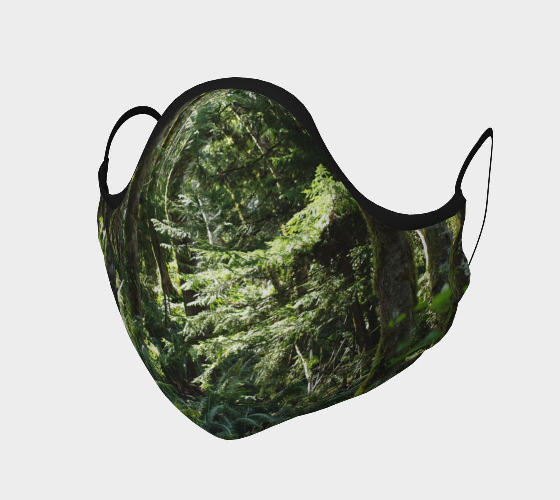 Aperçu de Lush Forest Walk