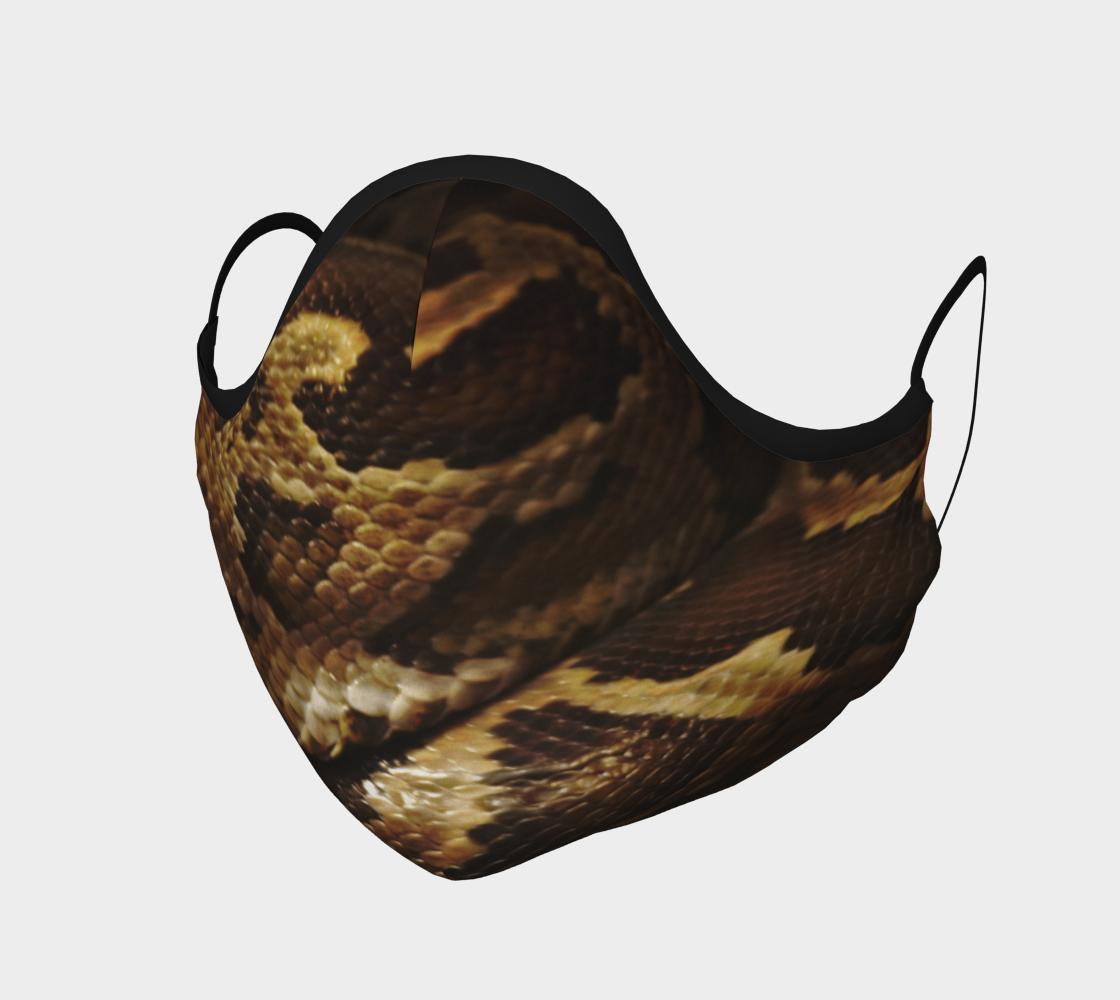 Rattlesnake skin Image preview