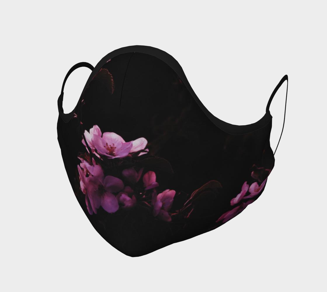 Aperçu de Fleurs de pommier  |  Apple Blossoms