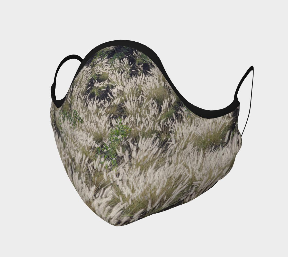 Aperçu de Graminées  |  Grasses