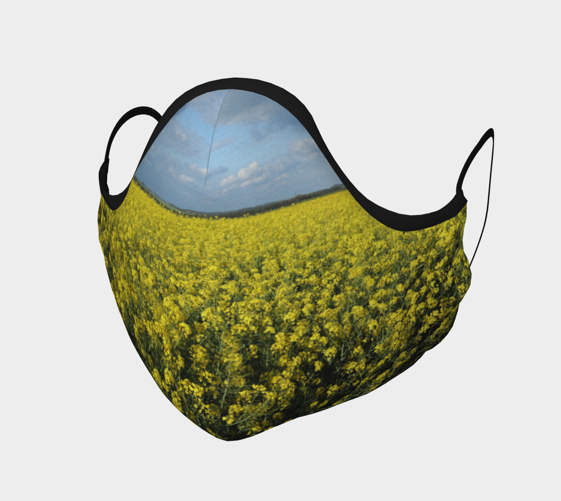 canola field preview