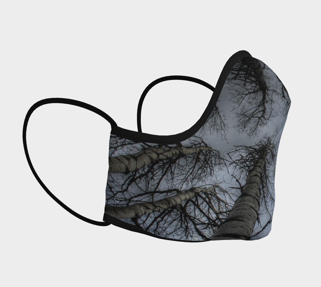 The Nine Spirits- Aspen Trees preview #3