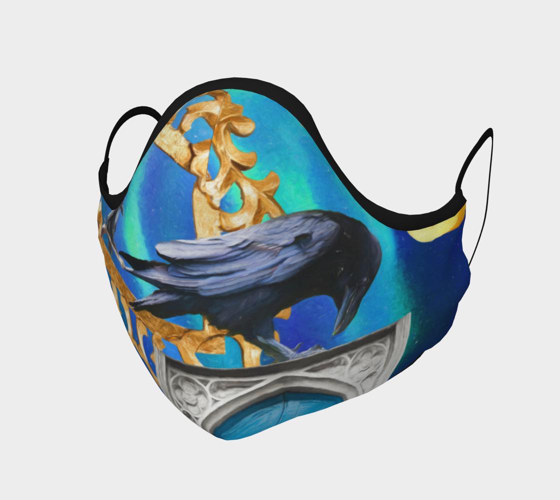 Aperçu de Raven Magic Mask