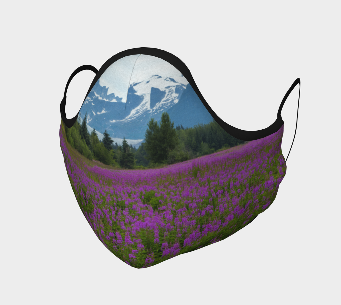 Fireweed2021 preview