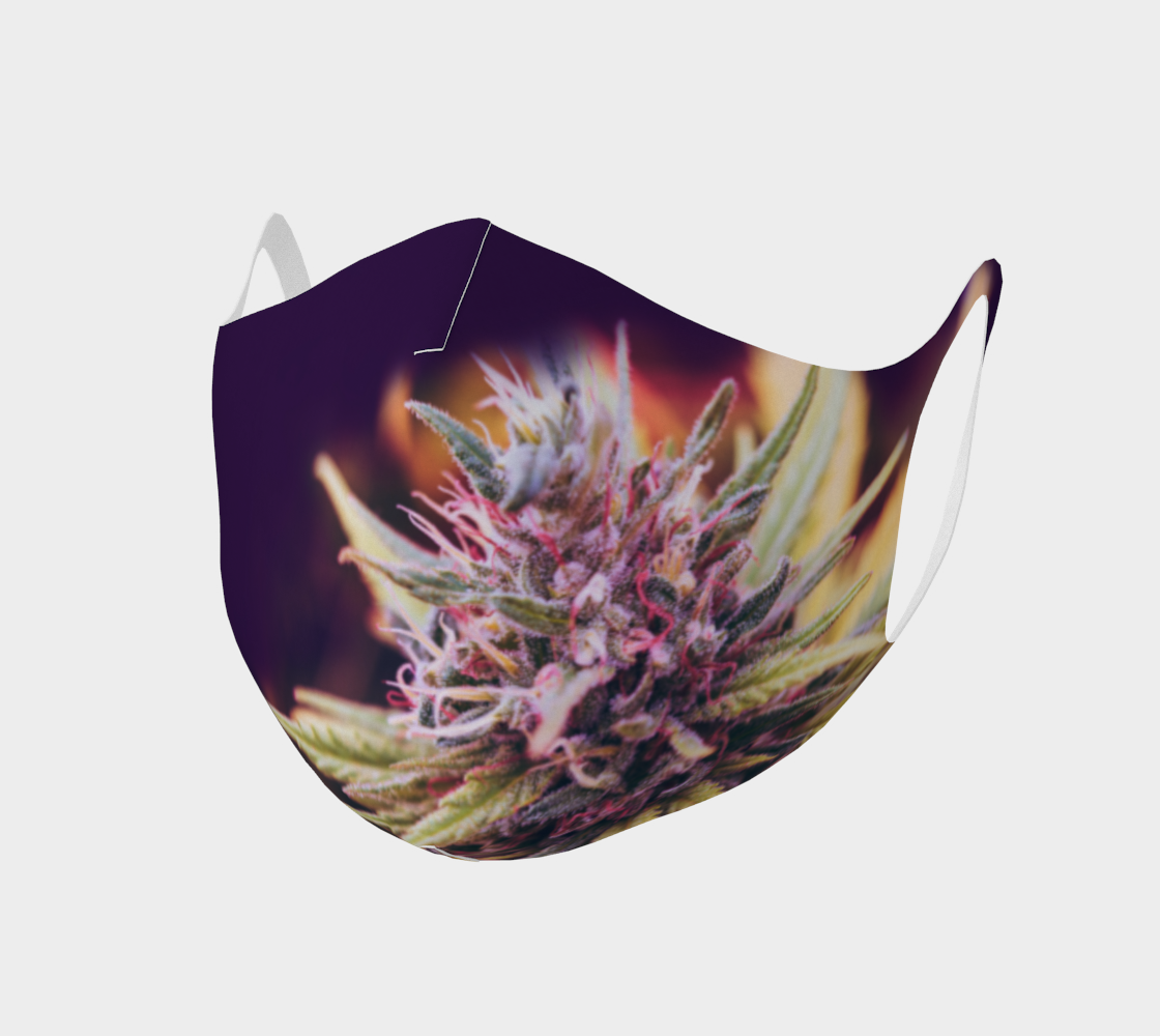 Face Mask Style 2 - Cannabis Flower on Purple preview