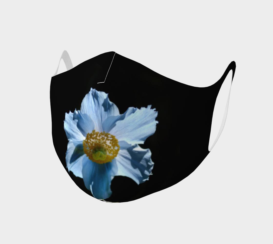 Aperçu de Pavot bleu  |  Blue Poppy