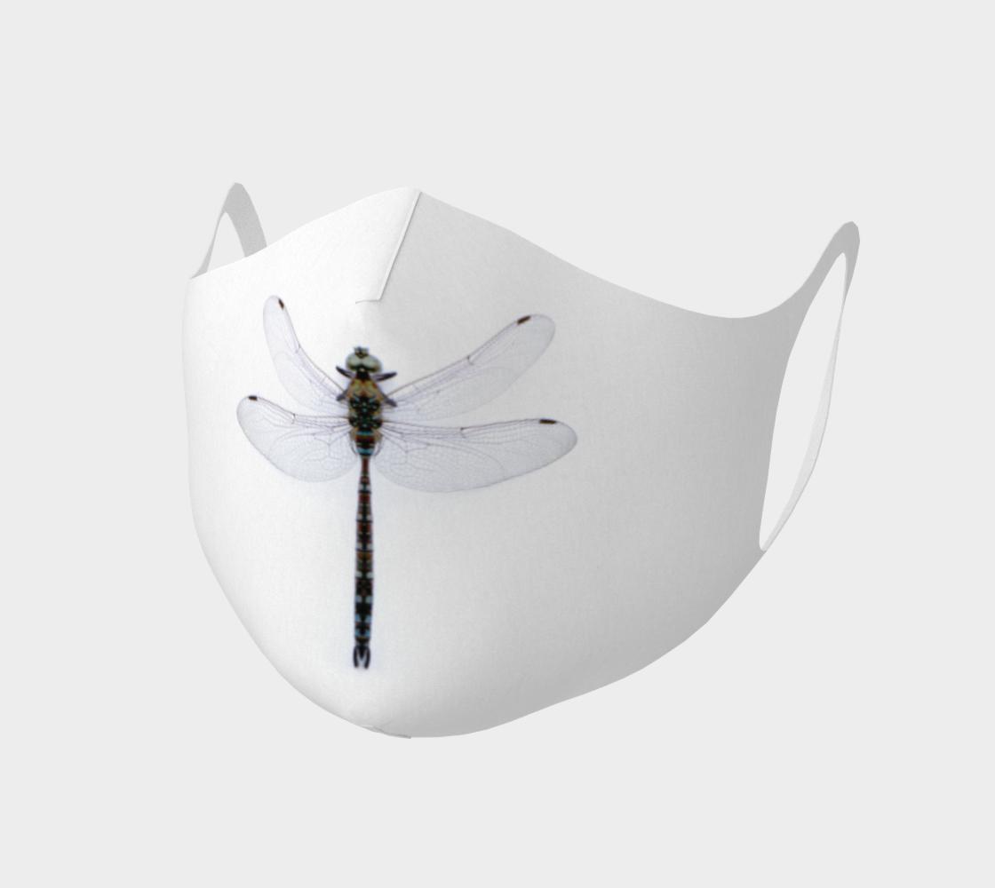 Aperçu de Libellule  |  Dragonfly