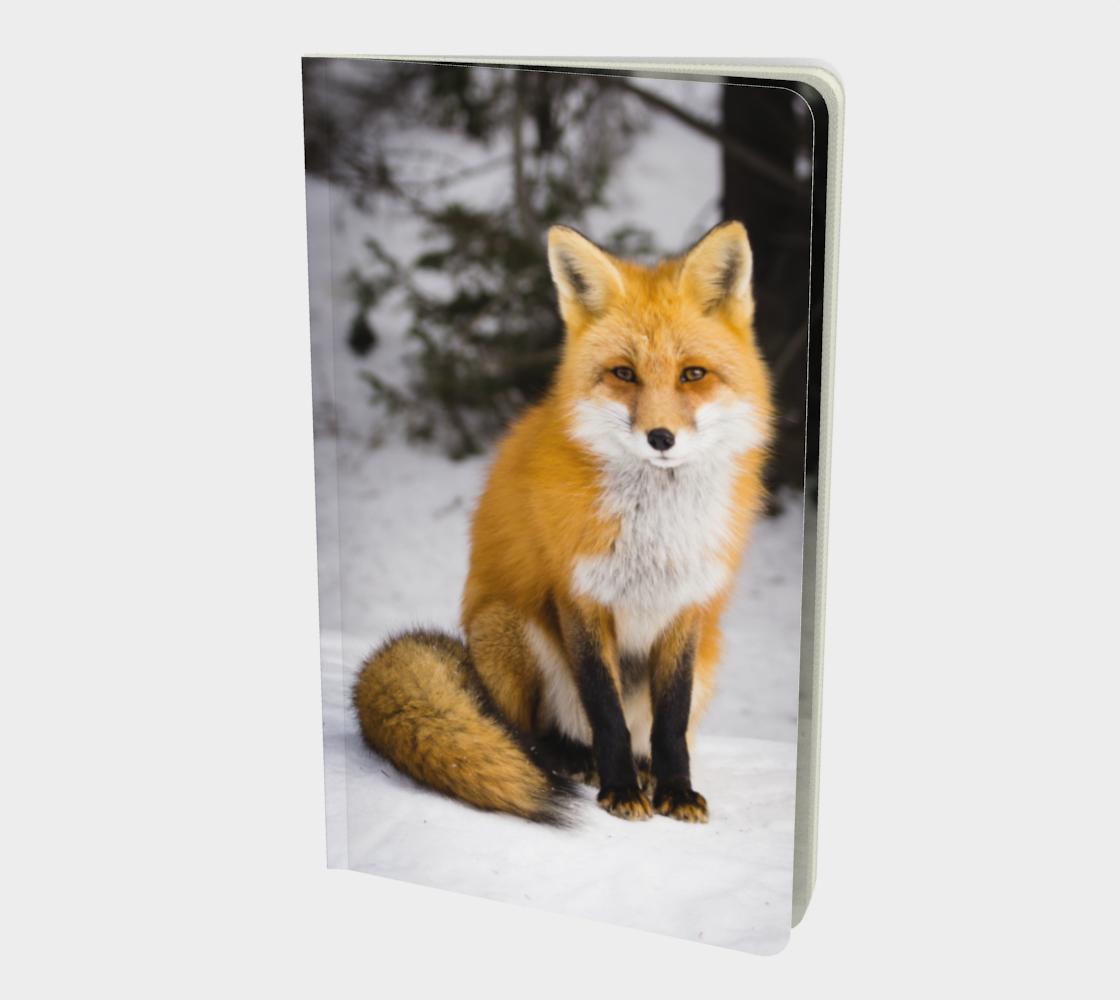 Fox notebook aperçu