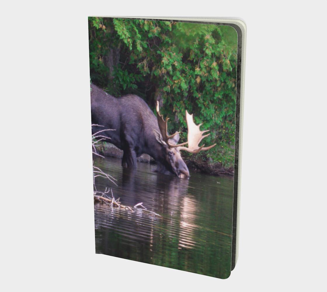 Aperçu de Moose notebook