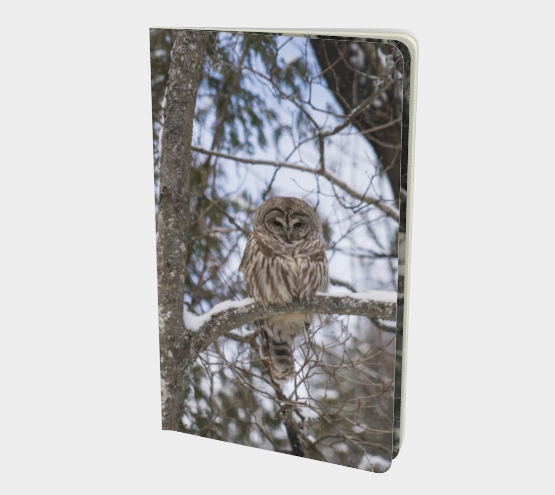 Aperçu de owl notebook