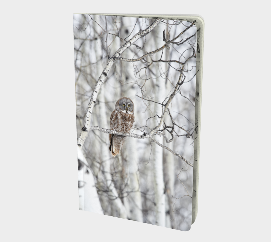 Great gray owl  preview