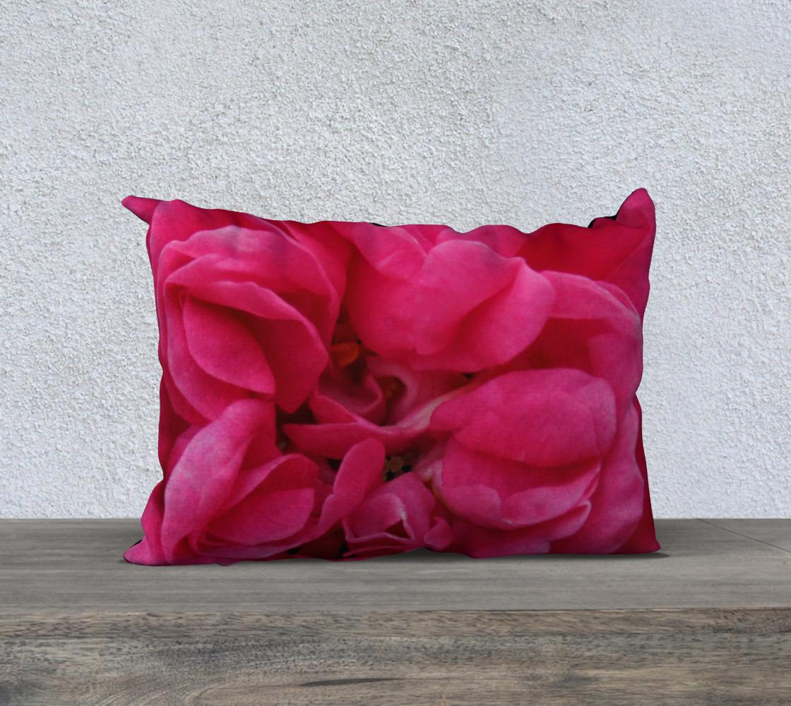 Aperçu de Multi Petaled Rose 20X14 160526a