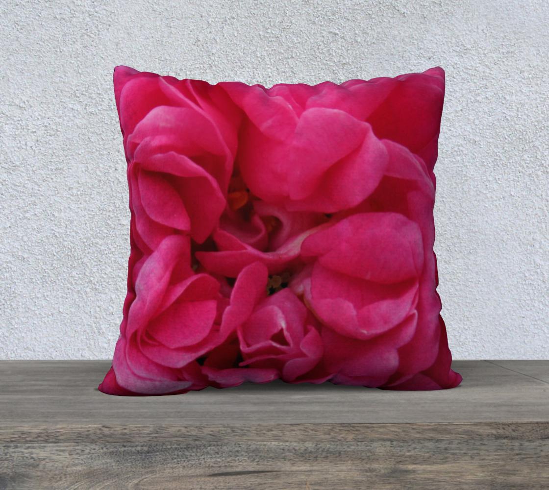 Aperçu de Multi Petaled Rose 22 160526a