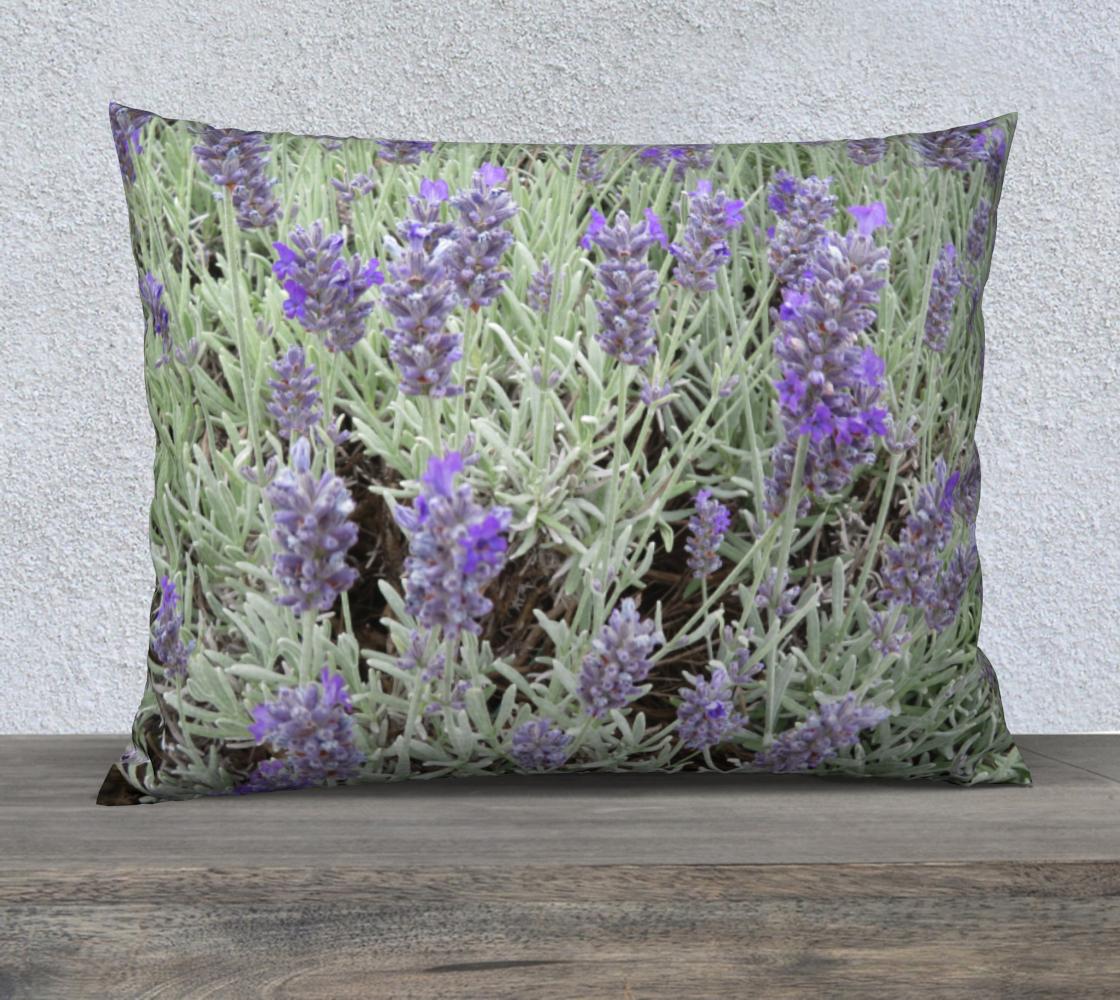 Lavender Up Close PiC3 aperçu