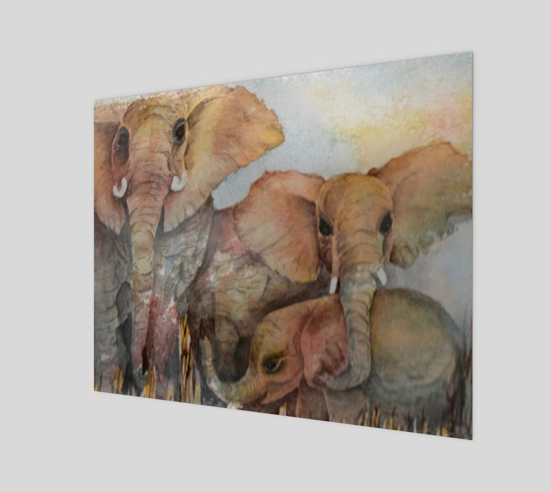 Elephant Family preview #1