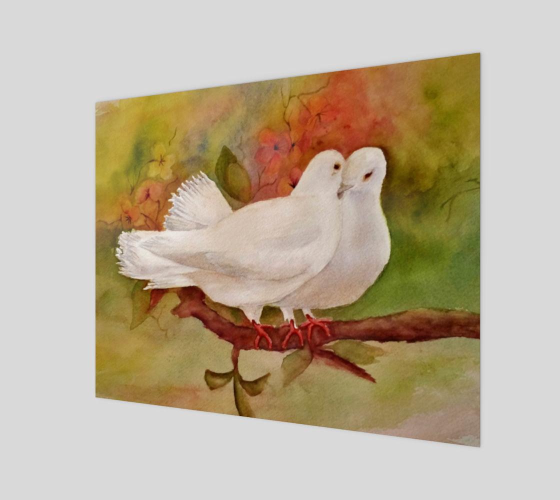 Love Doves preview