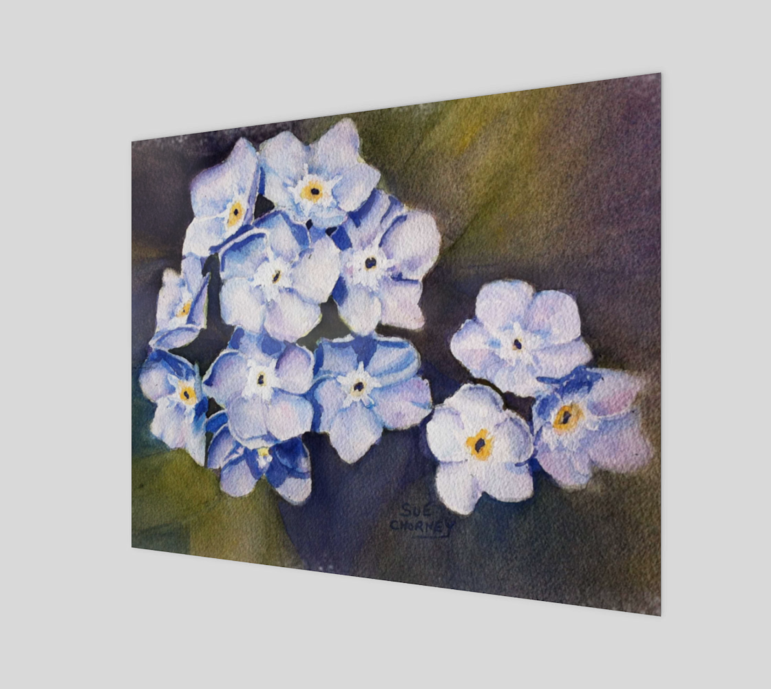 Fun Forget-me-not Flowers preview
