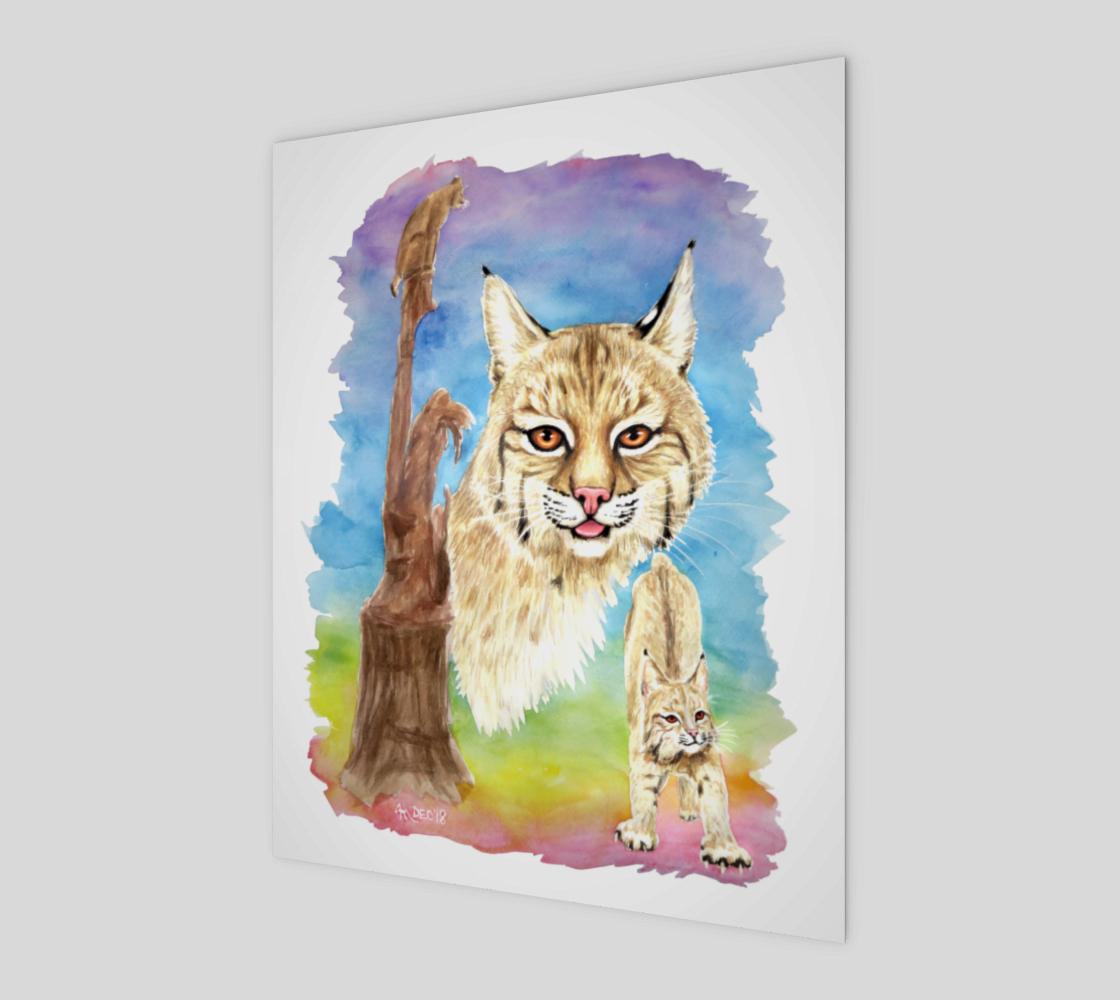 Aperçu de Smalls Bobcat 8x10