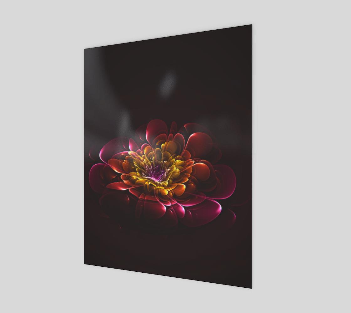 Aperçu de Bloom