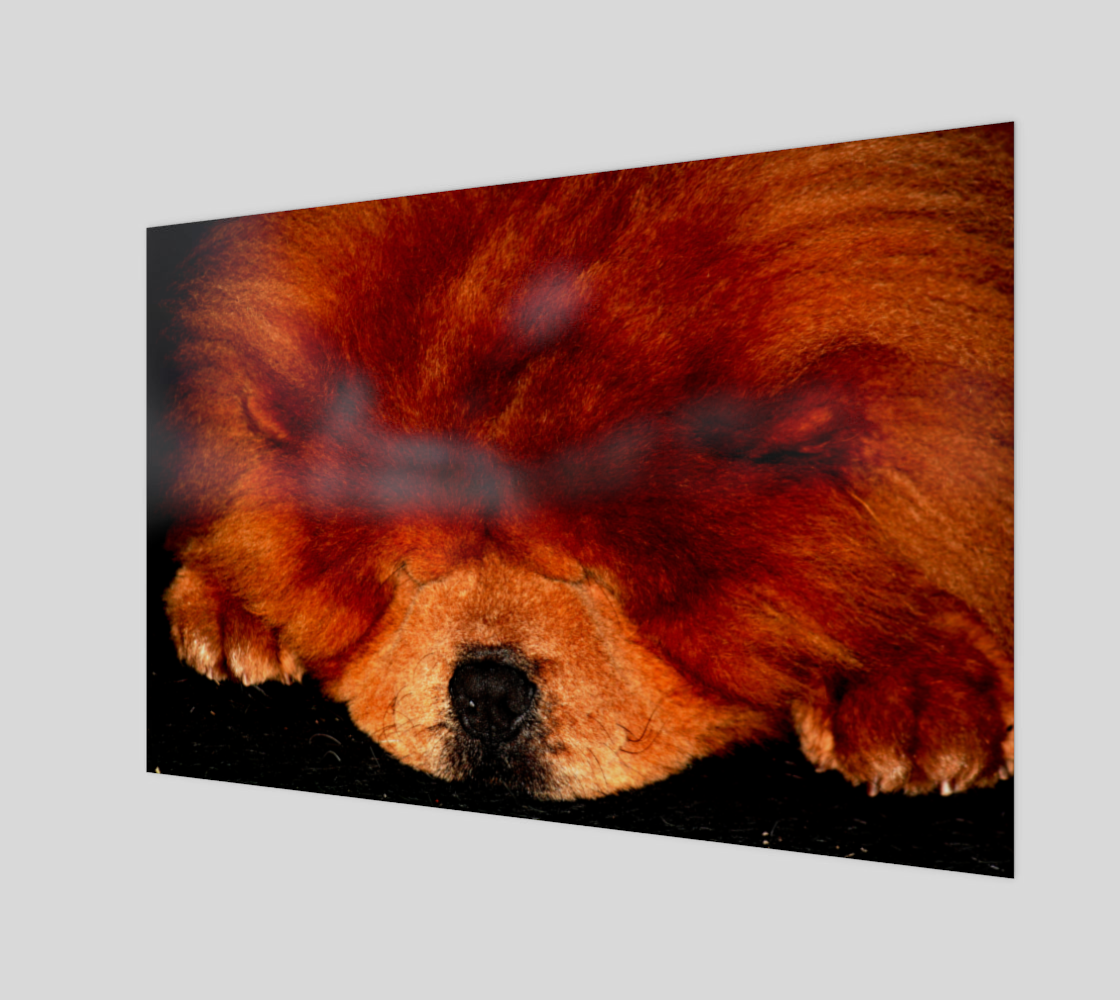 Sleeping Chow Chow Art Print preview