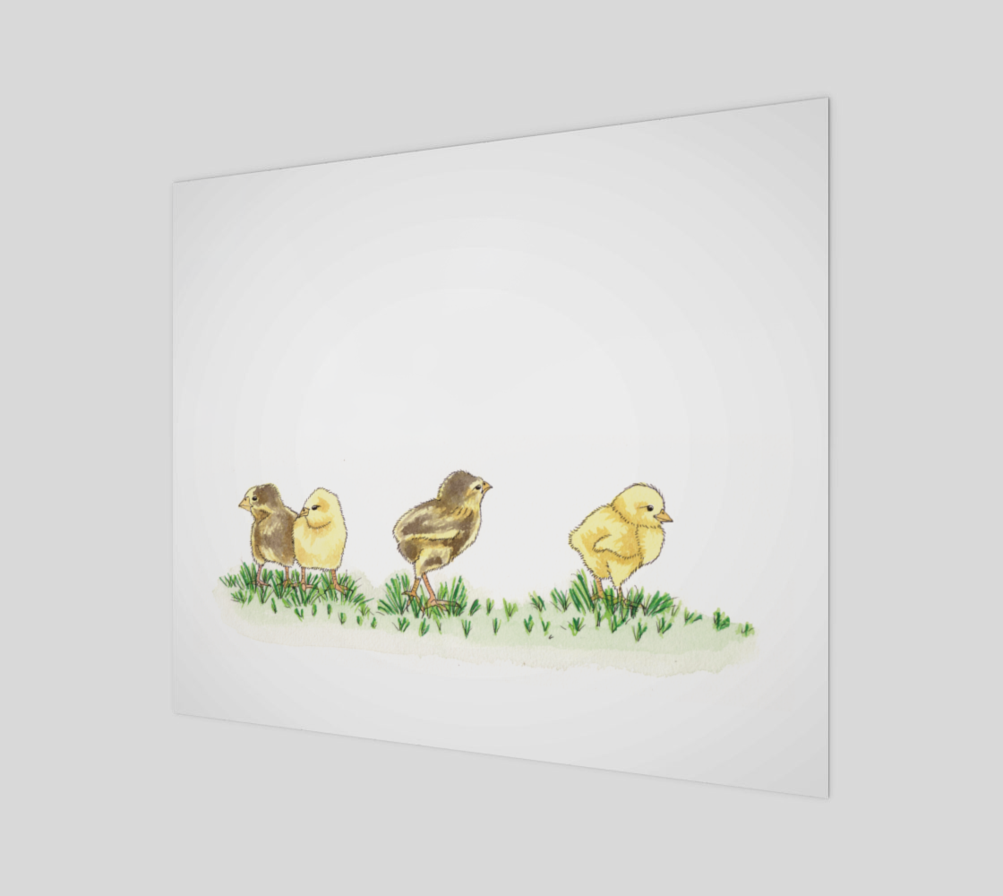 Baby Chickens preview