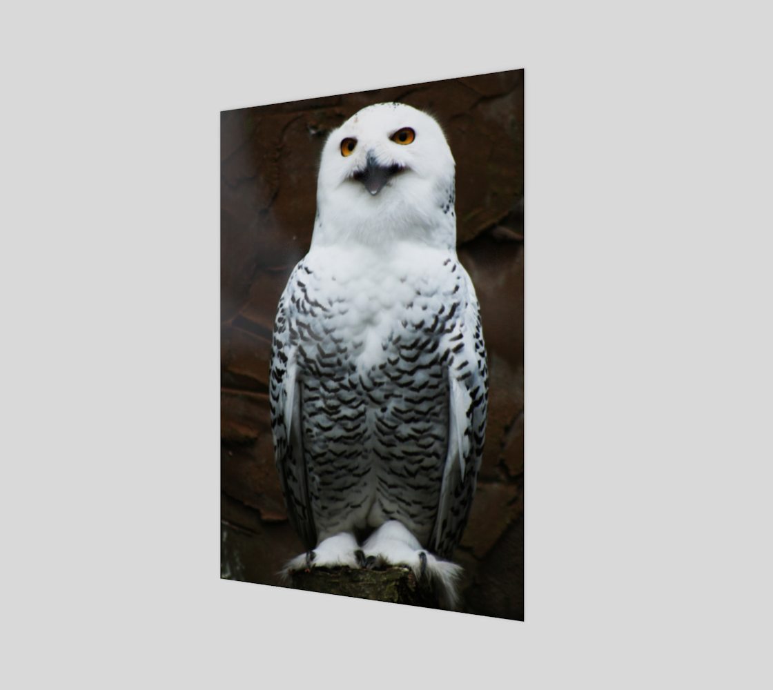 Snowy Owl Wood Print preview