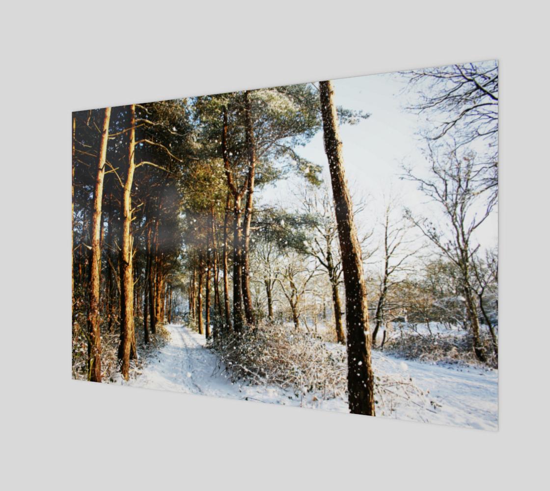 Aperçu de Forest Snow Scene Poster Print #1