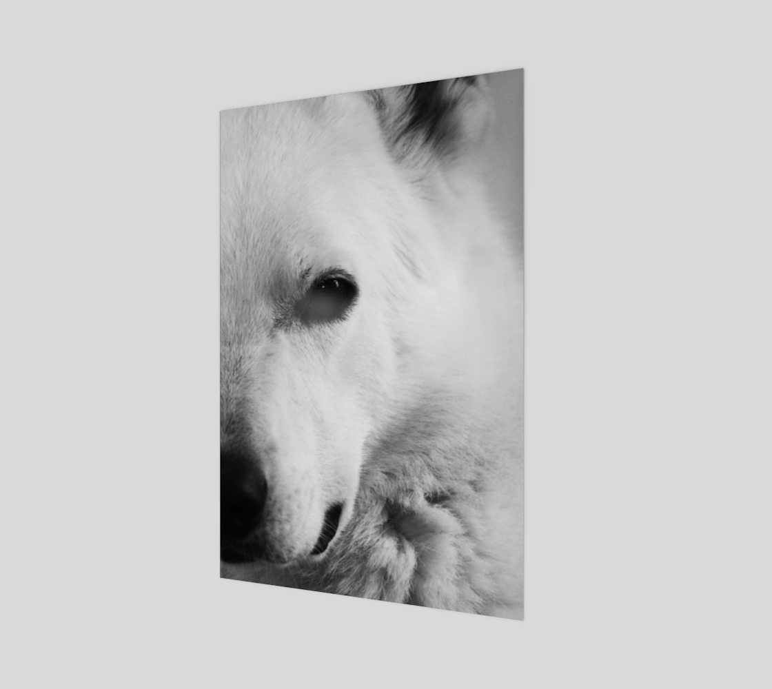 White German Shepherd Wood Print preview