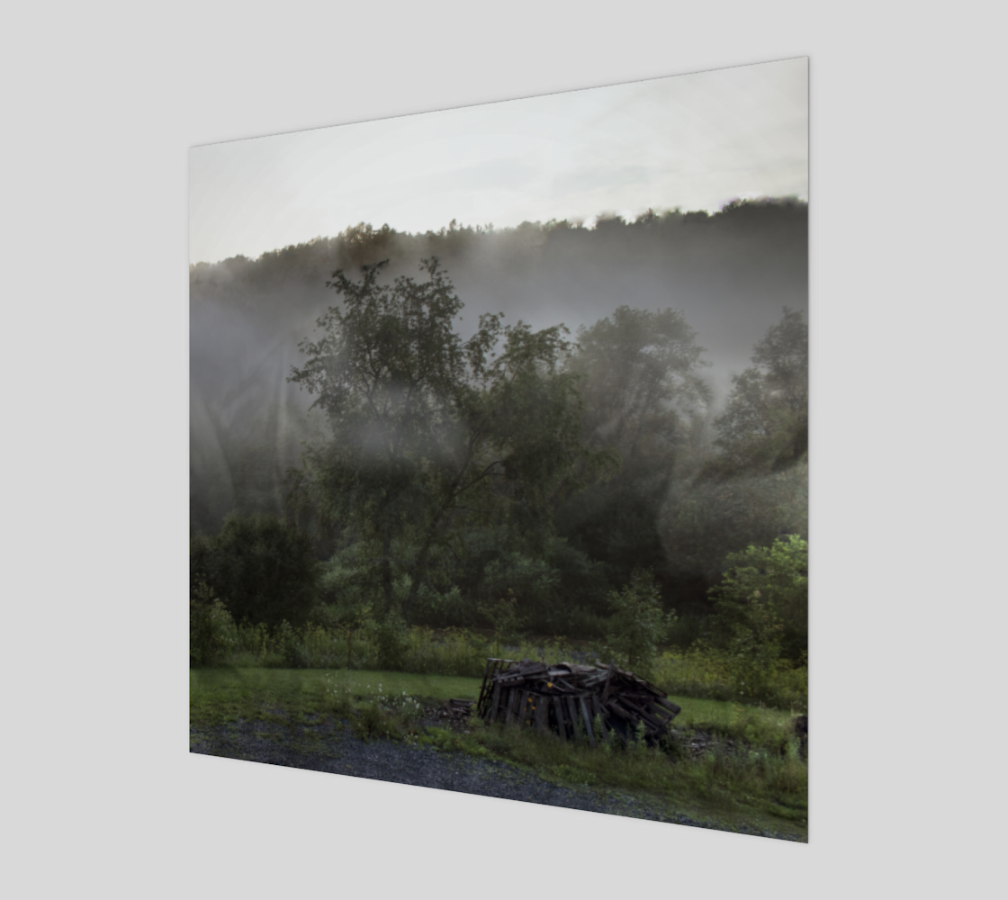 Foggy Afternoon Scene preview