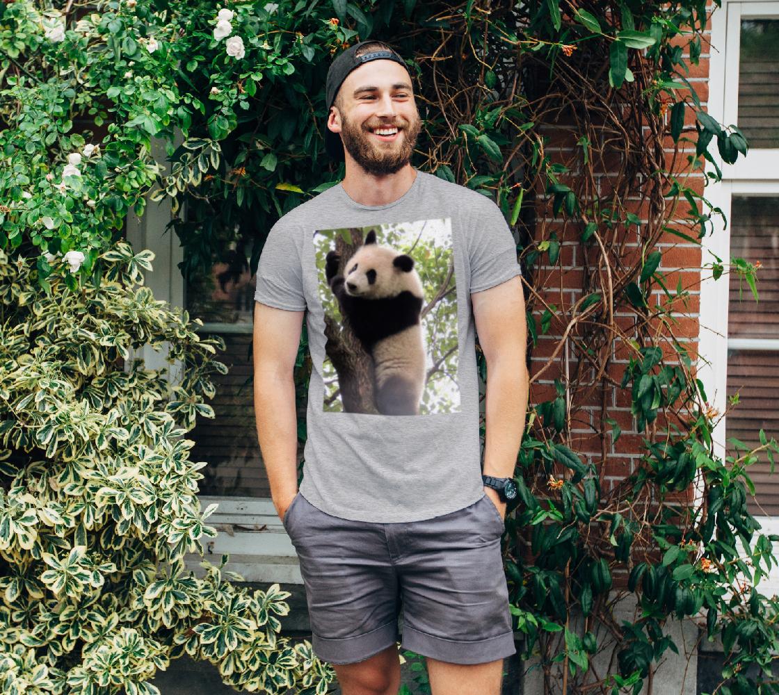 Aperçu de bébé panda | baby panda