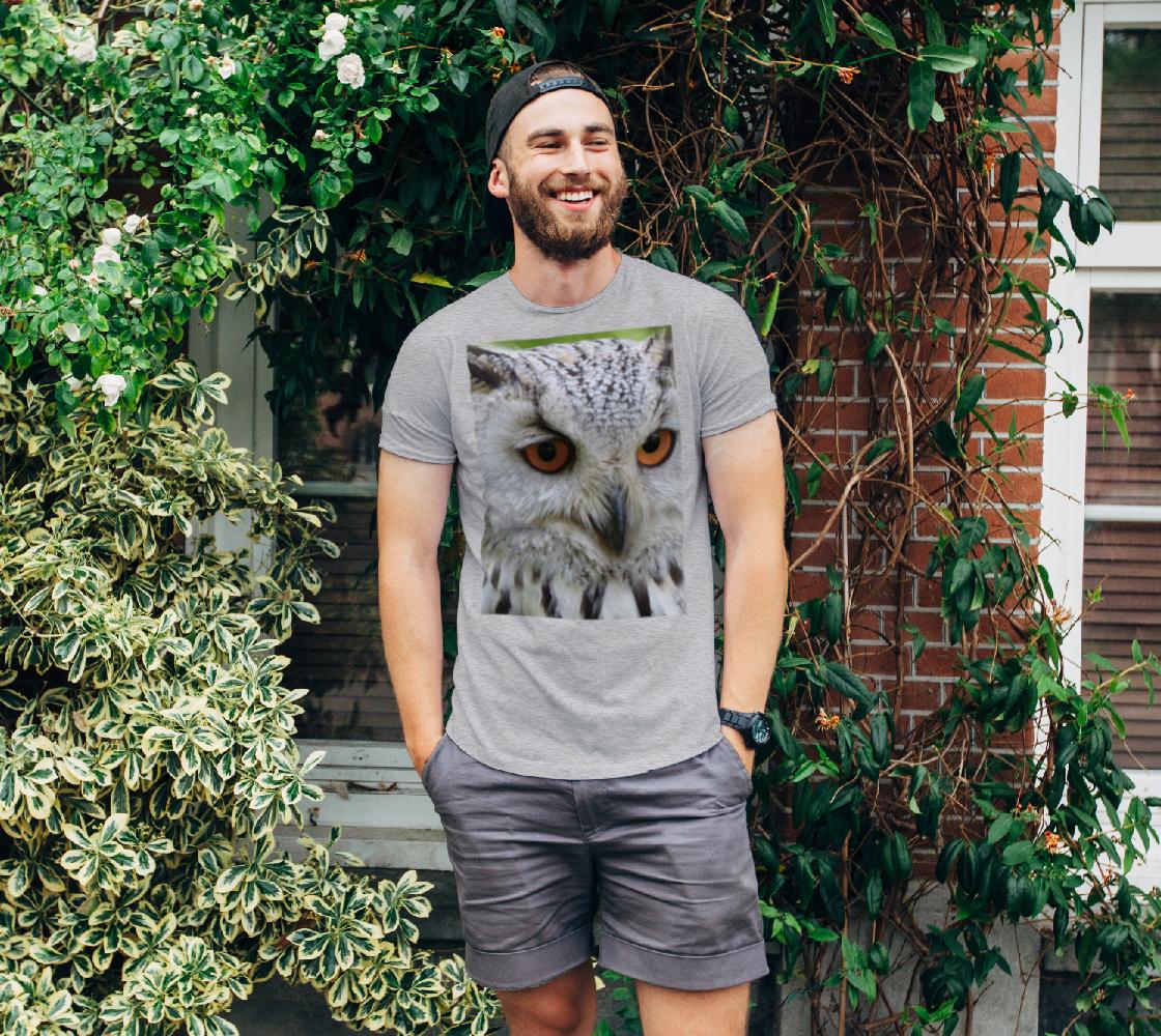 Aperçu de hibou | owl