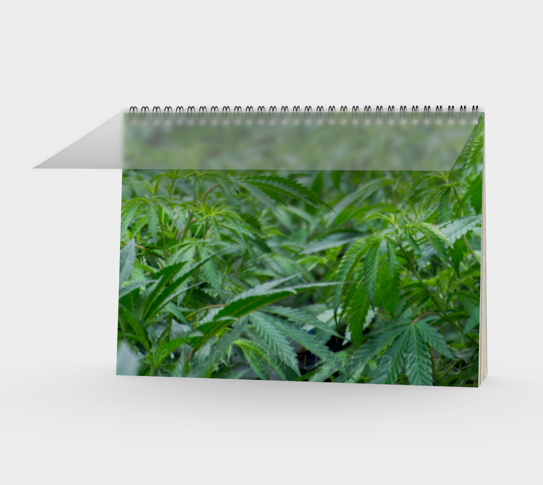 Field of Dreams Spiral Notebook preview