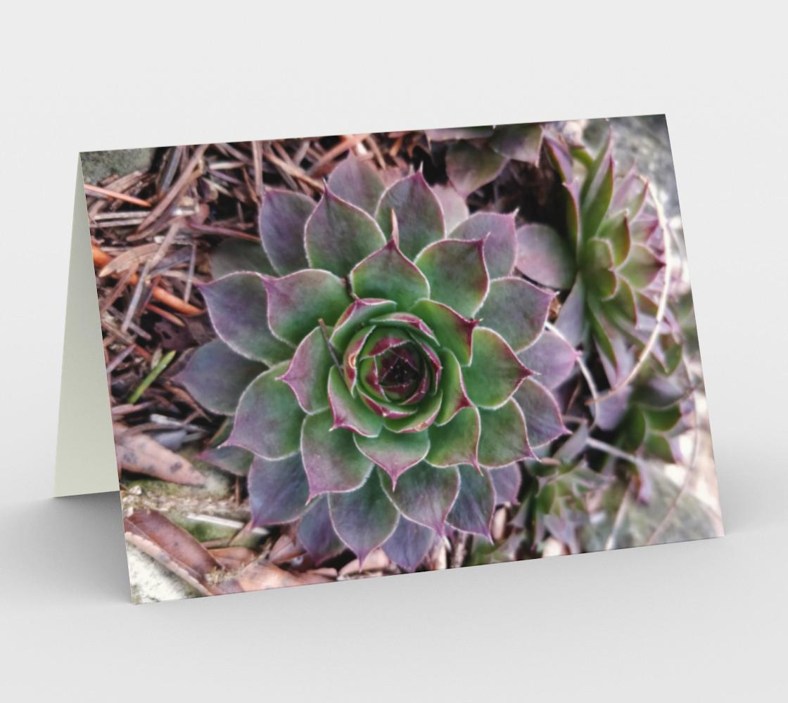 Notecards - Botanica 1 preview