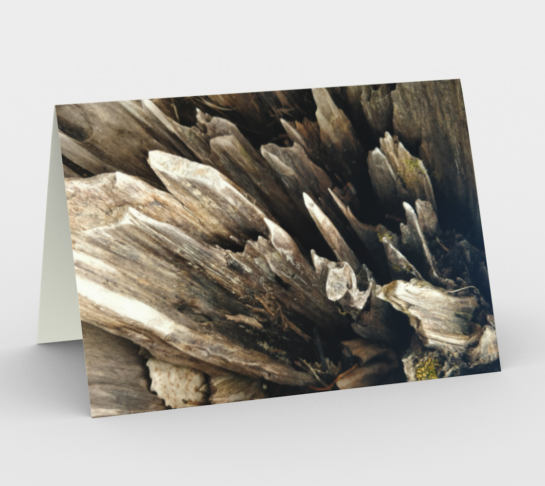 Notecards - Nature's Treasures 4 preview