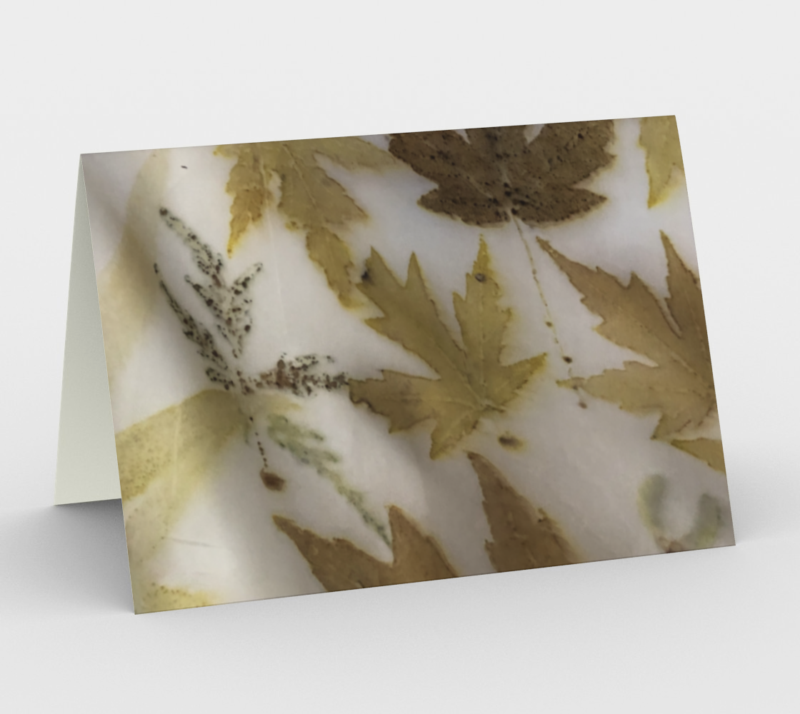 silver maple preview