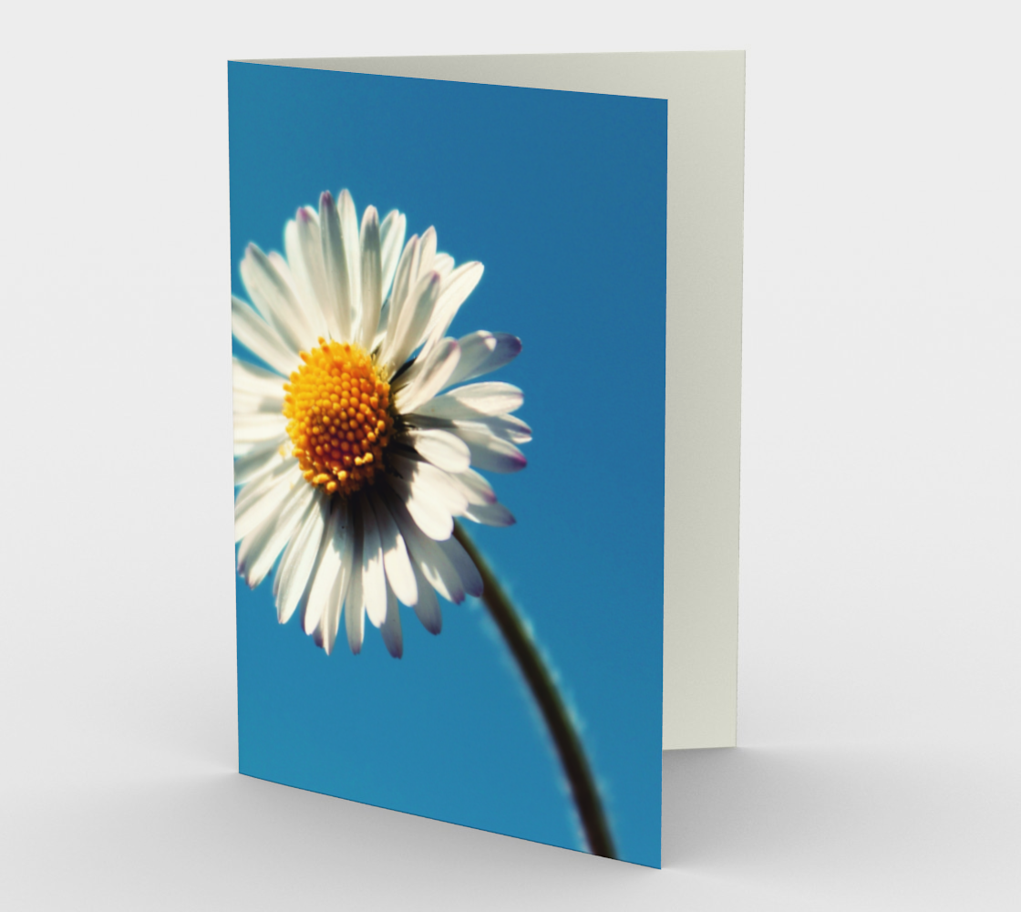 daisy on blue stationary greeting card preview