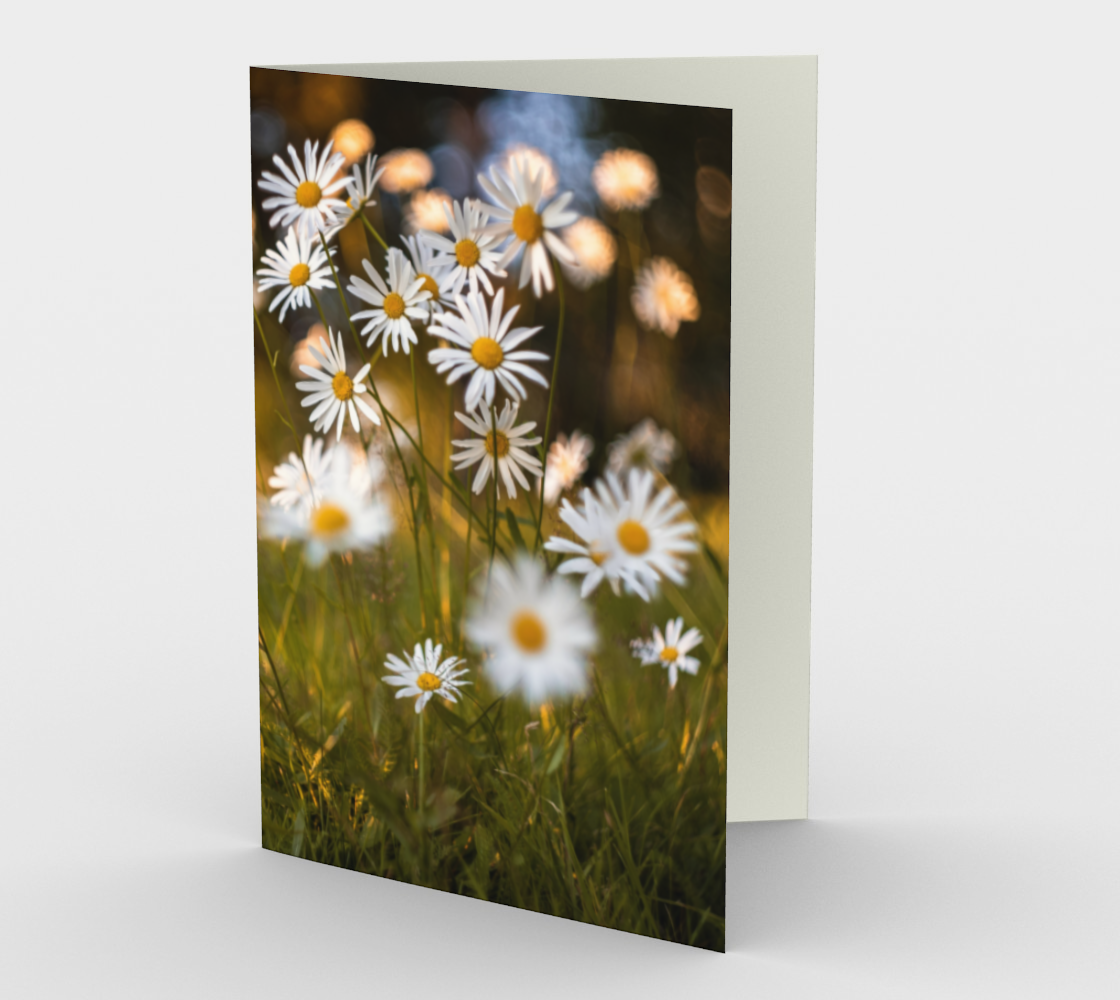 daisies stationary greeting card preview