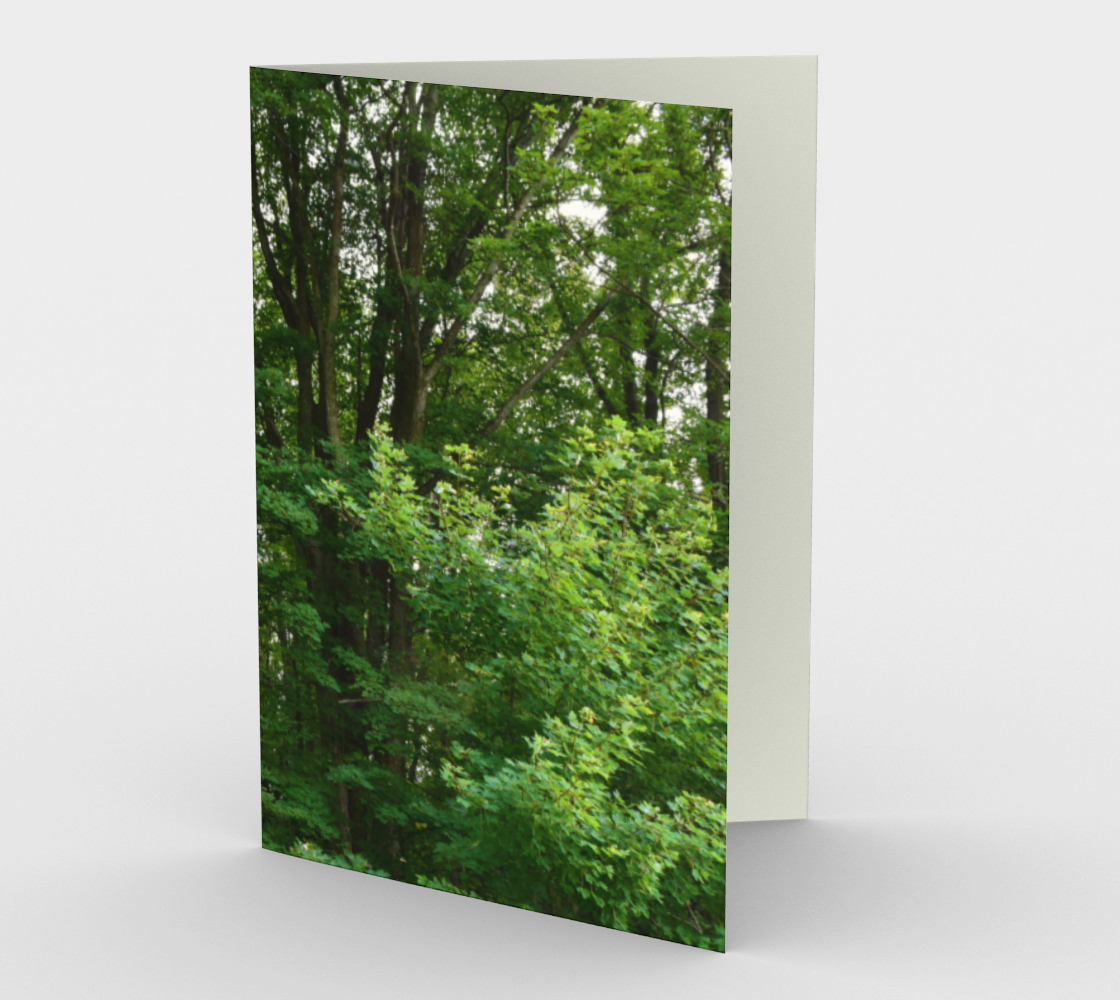 trees preview