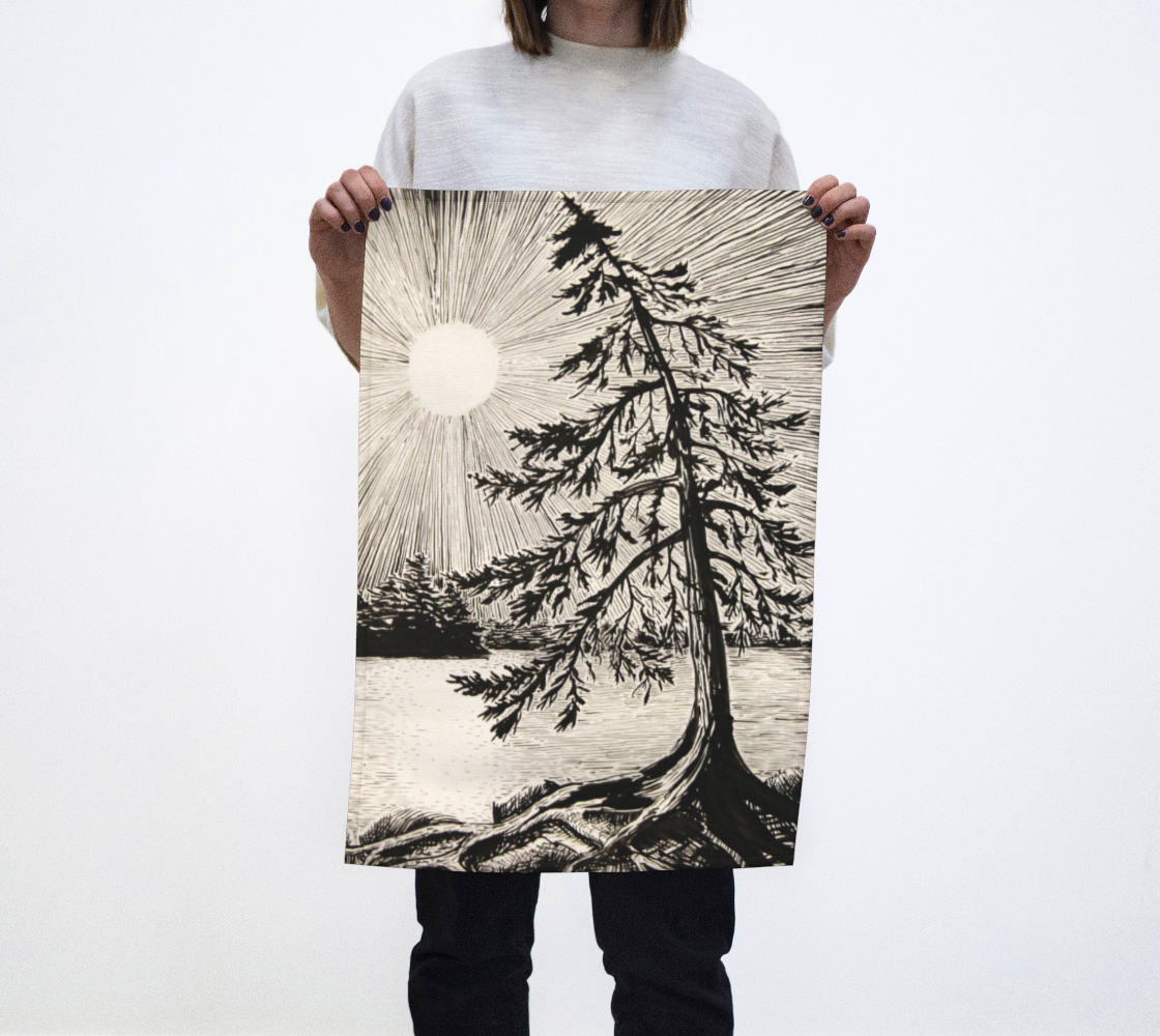 Evening Pine preview