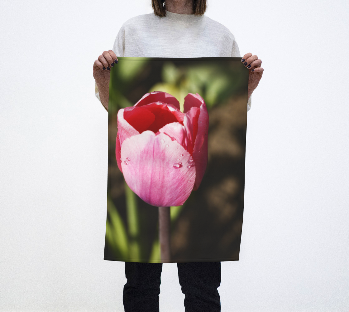 Pink Tulip with Raindrops preview #1