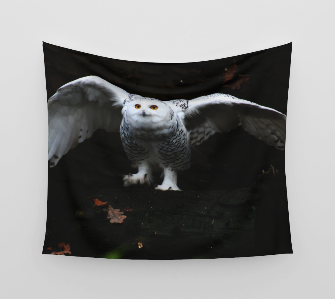 Snowy Owl With Open Wings Wall Tapestry preview