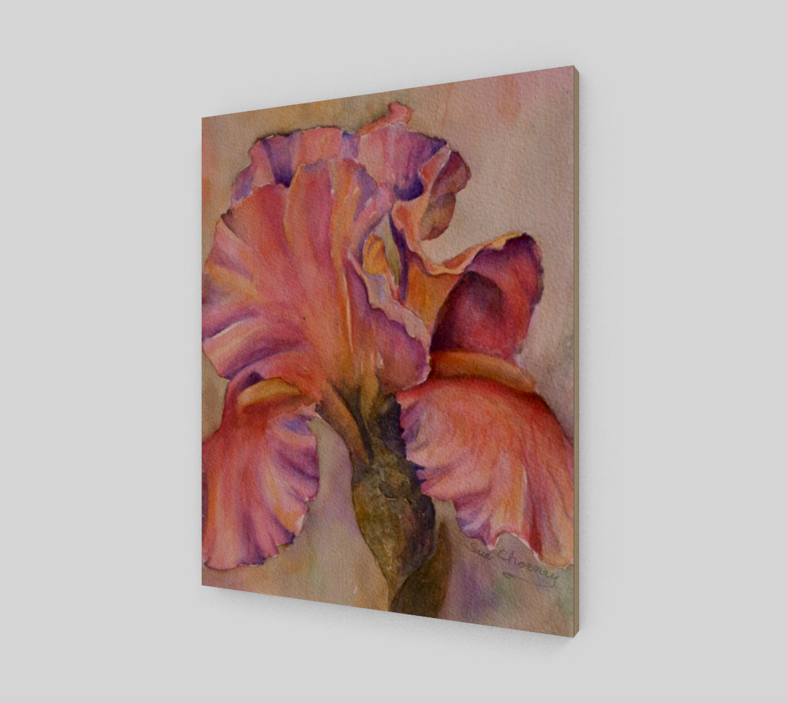 Perfectly Pink Iris preview