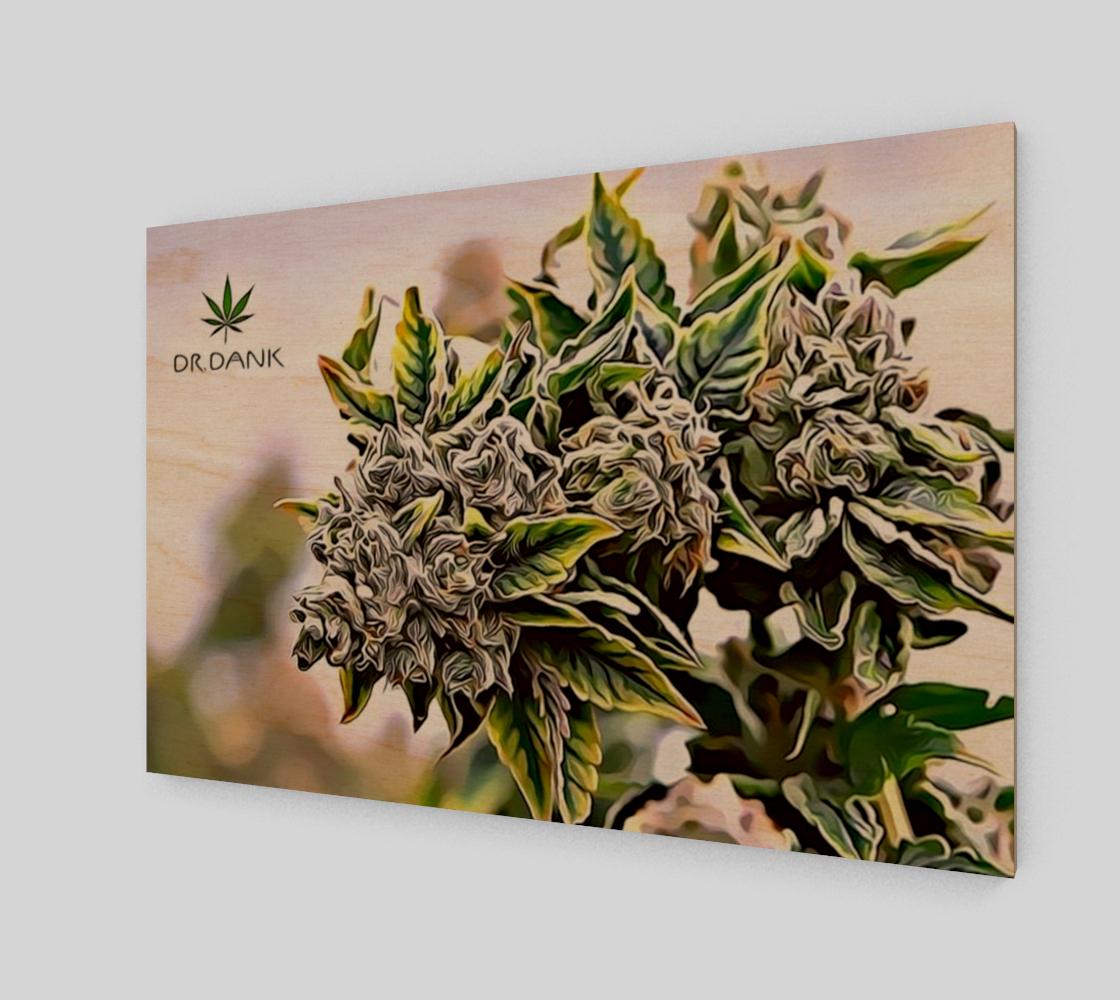 Oberlin Cannabis Wall Art preview