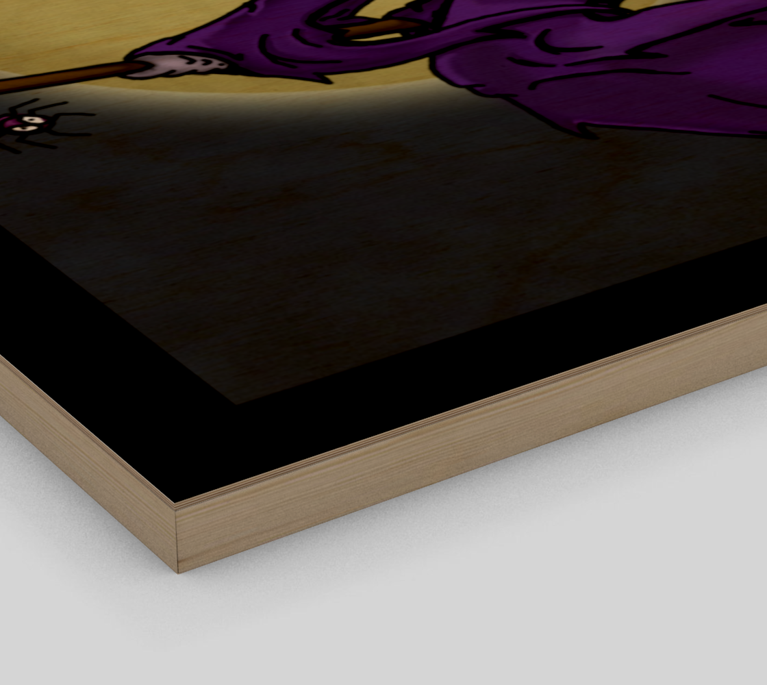 Wiccan Moon / Canvas Only preview #3