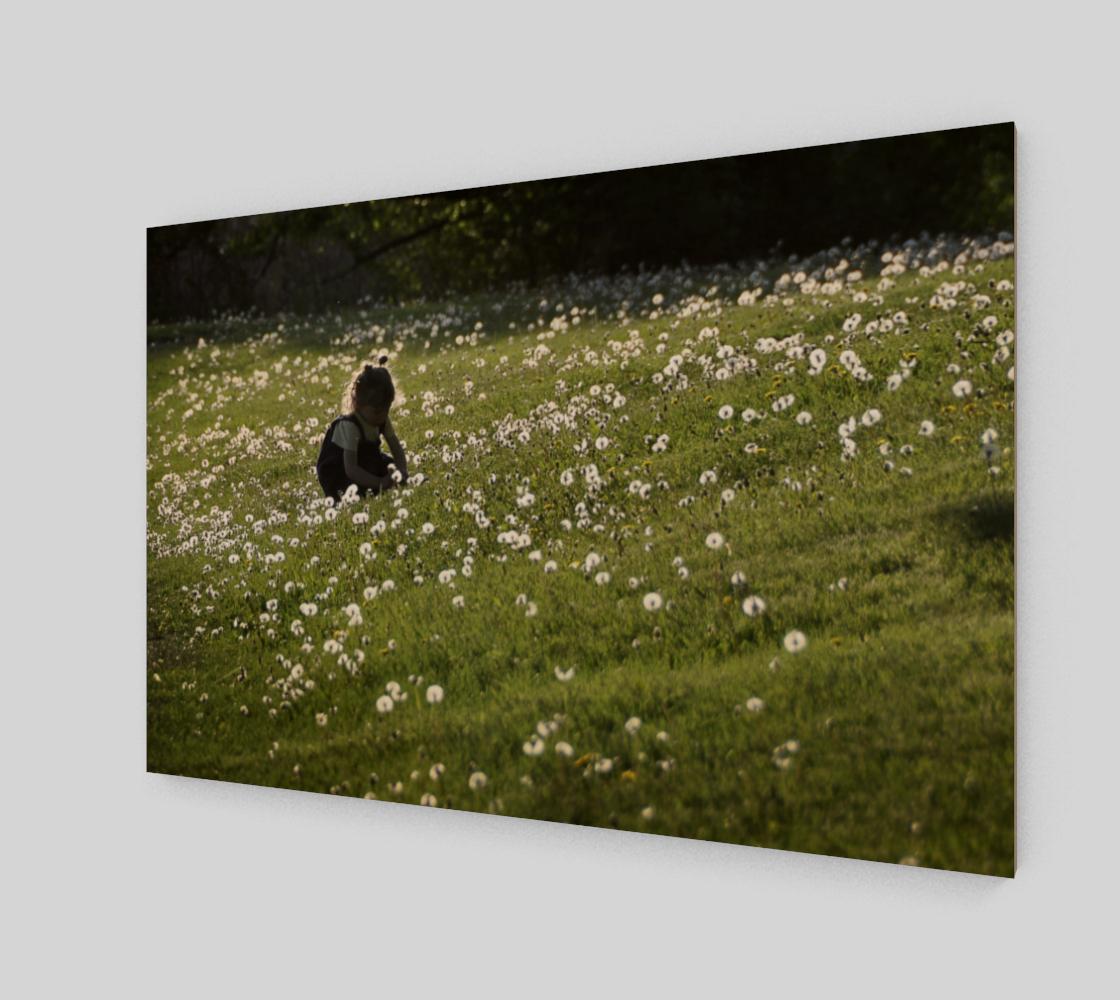 Aperçu de Enfant dans les pissenlits - fleurs #2