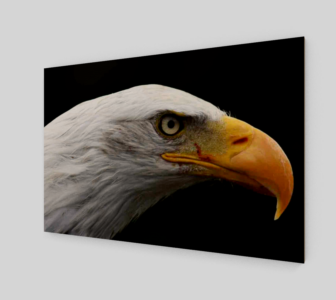 Bald Eagle Wall Art preview #2