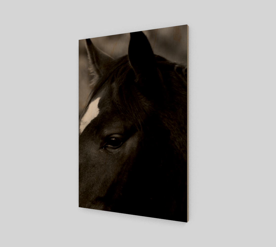 Horse Poster Print preview