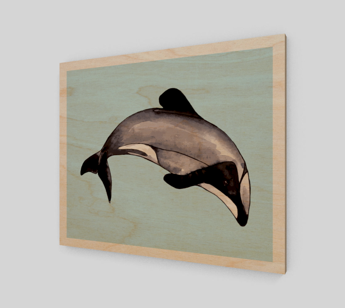 Maui Dolphin preview